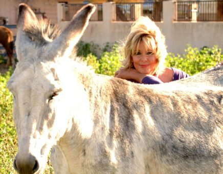 Jan's adorable burro Zanny