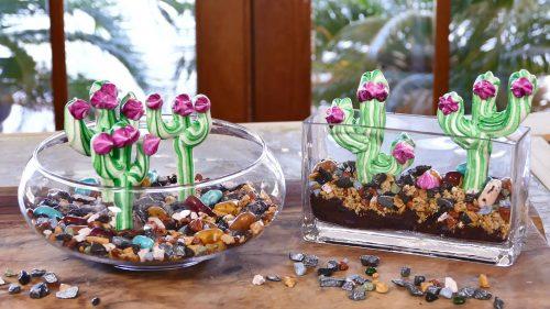 Edible Cacti Terrarium