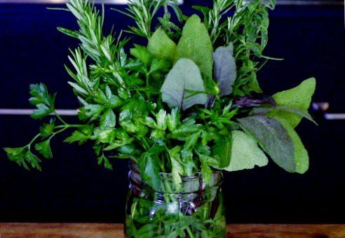 Refrigerator Herb Garden